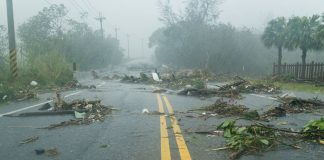 food_safety_tropical_storm_hurricane_flooding
